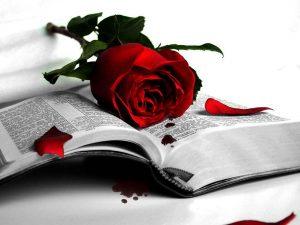 kata kata mutiara dan bijak untuk orang putus cinta