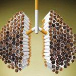 Dampak Negatif Rokok Yang Sangat Berbahaya Bagi Kesehatan Tubuh Manusia